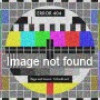 Bridget Jones: Na rubu pameti